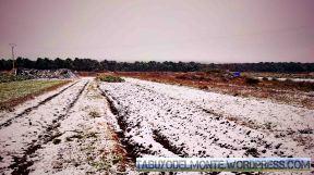 Tabuyo nieve 15_18