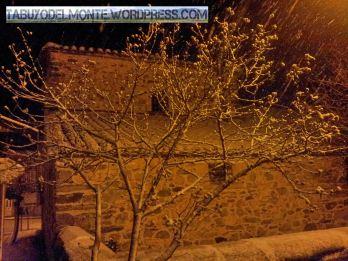 Tabuyo nieve 15_3